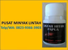 hp wa 0823 9366 3903 apotik yang jual minyak lintah chc minyak lint