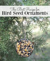 the best recipe for bird seed ornaments the resourceful