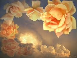 Golden Roses Golden Roses Art Flowers U0026 Nature Background Wallpapers On