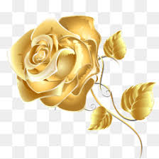 Golden Roses Golden Rose Png Vectors Psd And Icons For Free Download Pngtree