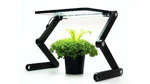 best grow lights for vegetables best light for growing plants indoors best light for growing plants