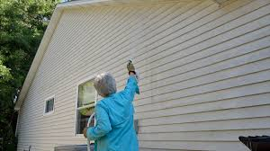 siding house how to clean house siding mother daughter projects