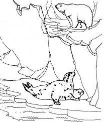 two polar bear eat fish colouring page two polar bear eat fish