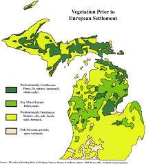 Michigan vegetaion images Michigan vegetation jpg