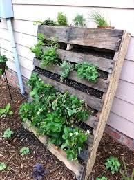 raised vegetable garden layouts