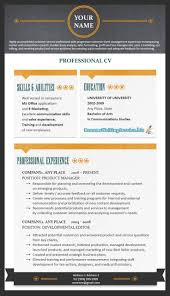 Professional Resume Best Professional Resume Format Free Resume Example And Writing