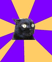 Cat Memes Generator - anxiety cat meme generator