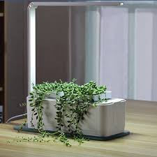 amazon com smart hydroponics indoor herb garden kit by savvygrow
