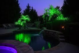realistic led palm tree tropical pool atlanta by christmas