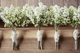 baby s breath bouquet baby s breath cline