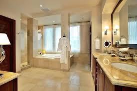 Master Suite Bathroom Ideas Master Bedroom With Bathroom Aciu Club