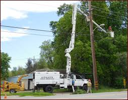 utility tree service welcome to the official web site of uts
