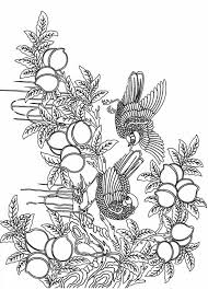 pictures free printable advanced coloring pages adults 94