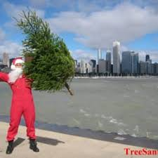christmas tree delivery treesanta chicago christmas tree delivery 19 reviews christmas