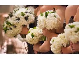 hydrangea bouquet white hydrangea bouquet white flower images and ideas collection