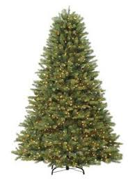 kensington grand 7 ft tree with 1800 led warm white lights