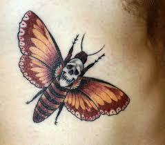 49 best death u0027s head hawk moth images on pinterest hawk moth