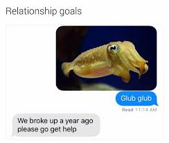 Relationship Memes Tumblr - 49 times we laughed our asses off on tumblr funny gallery