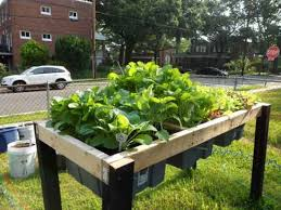 Making A Vegetable Garden Box by Best 25 Elevated Planter Box Ideas On Pinterest Raised Planter