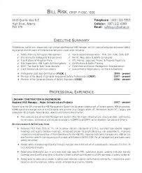 high resume summary exles marketing resume summary