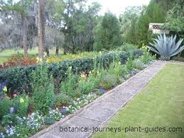garden landscape design ideas from pinewood estate