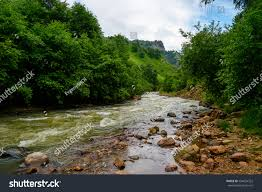Forest Green by Amazing Natural View Fast Mountain River Stock Photo 504054322