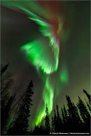 alaska aurora lights tour alaska aurora borealis 2014 astronomical tours by mwt associates