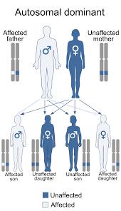 digeorge syndrome wikipedia