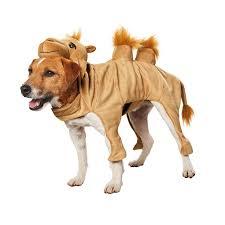 Dog Costumes Halloween 24 Halloween Costume Dogs Images Halloween