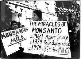 Monsanto Vanity Fair Monsanto U0027s Deep Legacy Of Corruption And Cover Up Global