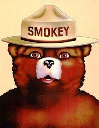 Smokey The Bear Meme Generator - smokey the bear blank template imgflip