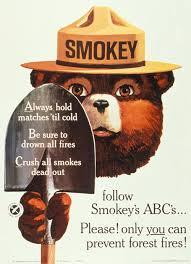 Only You Can Prevent Forest Fires Meme - smokey the bear smokeybear jpg smoky bear pinterest bears