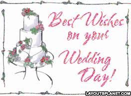 wedding wishes gif wedding gif find on giphy