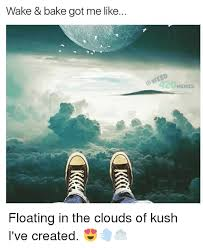 Wake N Bake Meme - wake bake got me like floating in the clouds of kush i ve created