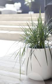 532 best terrace inspirations images on pinterest garden ideas