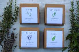 4 herb garden gifts basil thyme rosemary lavender indoor herb