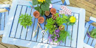 gardening tips gardening tips how to garden and landscape