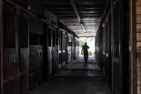 Regal Barn Troubled Regal Heir Farm Aka Star Barn Thoroughbreds Fails To