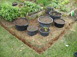 vegetable garden for small spaces container vegetable gardening home outdoor decoration