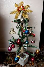 The Best Decorated Tree Is This The Oldest Tree In Britain 102 Year
