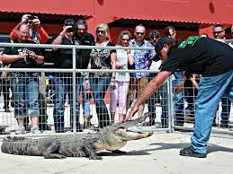 gator wrestling winter park fl no limit event rentals