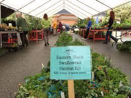 Botanical Gardens Volunteer by Growing The Spring Plant Sale Thank You Volunteers Lewis