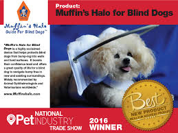 Halo For Blind Dogs Muffin U0027s Halo A Bridge Back To Life For Blind Dogs