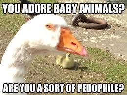 Goose Meme - funny for funny goose meme www funnyton com