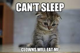 Cute Kitten Memes - 12 very sad kittens that never quite became a meme meme community