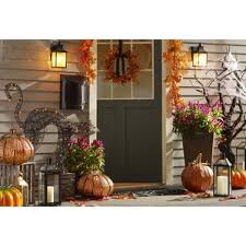 Plastic Lighted Halloween Decorations by Outdoor Halloween Decorations Birch Lane