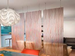 Studio Room Divider With Curtain Room Dividers Studio Apartments Idea Image 5 Of 14