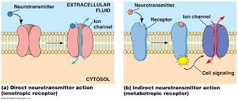 biol2060 cell biology