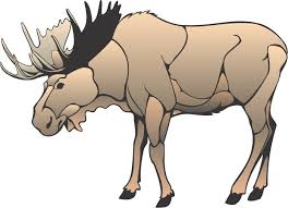 cute moose cliparts free download clip art free clip art on
