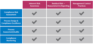 Outsourcing Risk Assessment Template by Compliance Risk Assessment Auditing And Monitoring Polaris